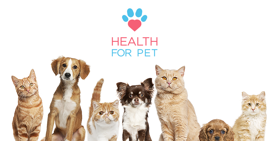 pets and health The human-animal bond is a mutually beneficial and dynamic relationship between people and animals that positively influences the health and well-being of both.